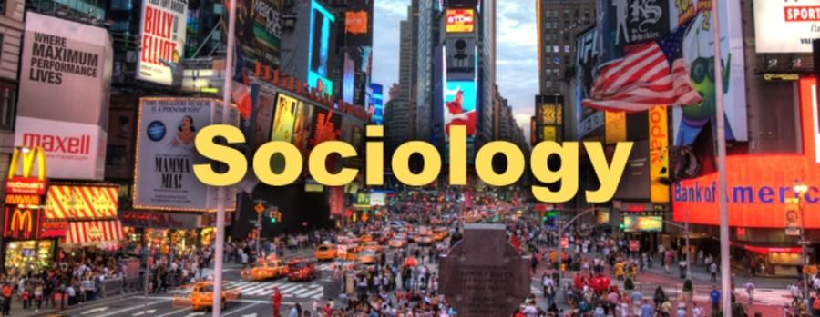 Custom sociology essays
