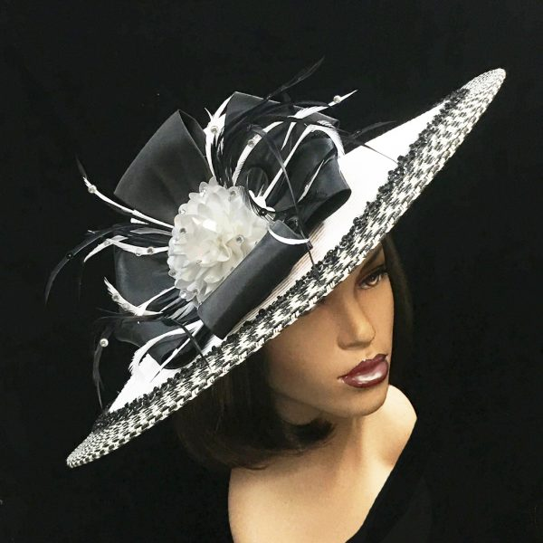 2250 Hera-WB ( Contrast Trim Picture Brim With Flower And Feather Sprigs )