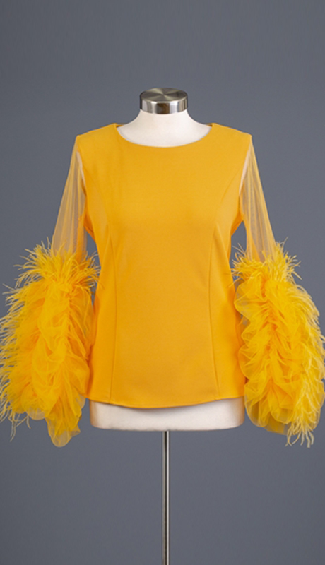 Why Collection T180592-MU ( 1pc Feather Trim Tulle Sleeve Top )