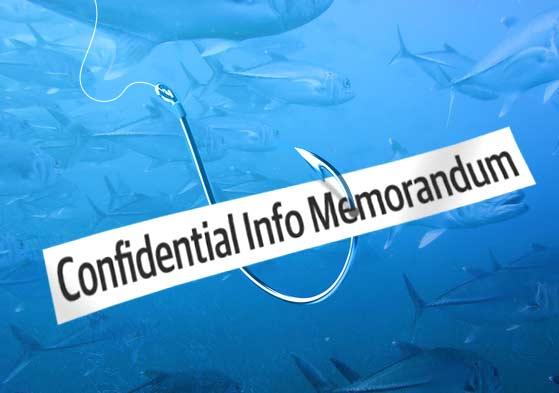 Confidential Information Memorandum Cim Example And Pdf