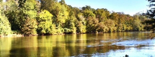 Very Private Ocmulgee River Lot - 4.7 Acres