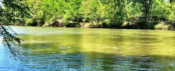Gorgeous, Affordable Ocmulgee River Lot