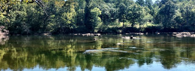 Ocmulgee River Lot River Trace