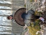 Tanner Faulkner of  Nebo, W.Va. with a gobbler killed  April 22 2020 in  Randolph County , W.Va. , 18 lbs., with a 10 1/4 inch  beard,