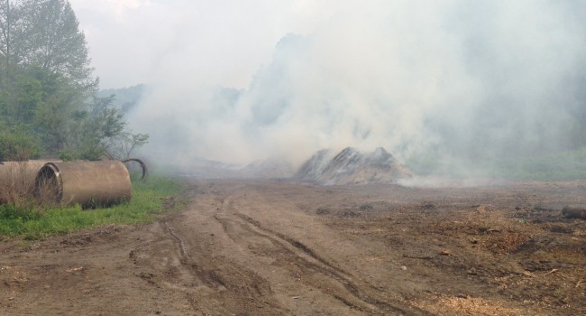 Smoke from six piles of woody debris caused problems for those with respiratory ailments.