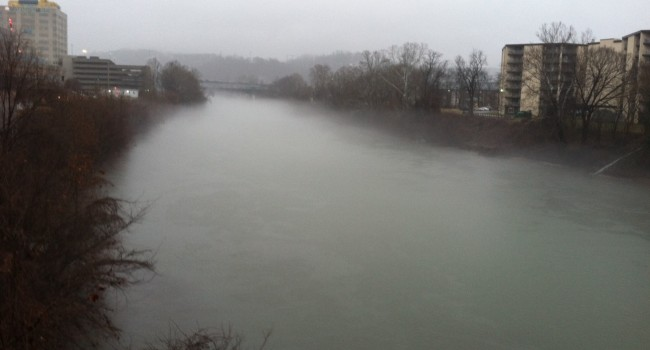 The Elk River in Charleston a day after the spill at Freedom Industries in January. Biologists found no evidence of fish kills at the time, but will probe further on possible impact.