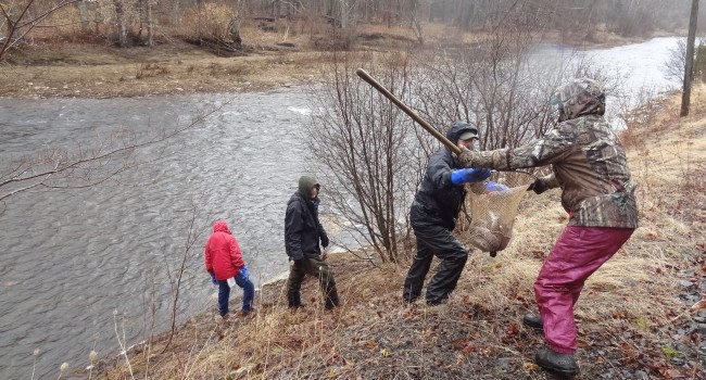 WV MetroNews West Va  DNR ready roll with new trout stocking