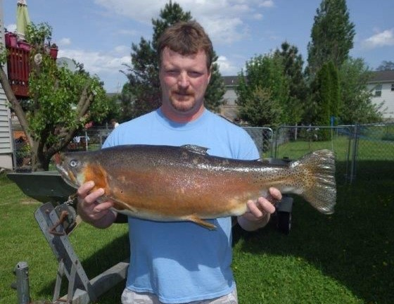 Wv metronews panhandle angler catches record rainbow for Zetts fish farm