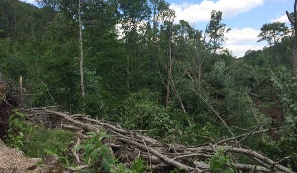 An NWS survey says this damage near Ona came from a tornado that touched down in early June.