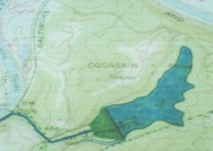The proposed Coonskin Lake (dark blue) would take up 65 acres in a current ravine.