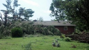 This storm damage happened in the backyard of a homeowner in Washington, near Parkersburg.