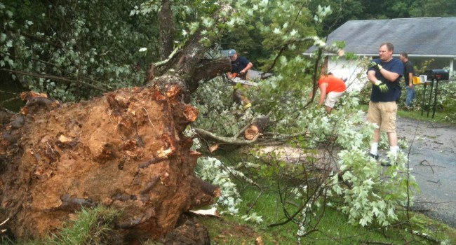 Large trees were uprooted near the Opekiska Lock and Dam in Monongalia County Tuesday afternoon.