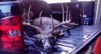 The buck which scored 161 5/8 was killed in Grant County, but the hunter allegedly had no license and claimed it was killed elsewhere as a landowner.
