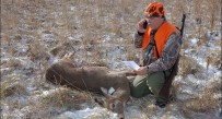 DNR says telephone was the most popular way to check deer under the new electronic game checks system