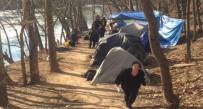Officials dismantled Tent City Tuesday afternoon, leading to outrage at City Council Tuesday night,