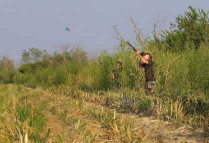 Concealment at the edge of an open field is a key position for hunting doves in W.Va.