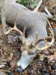 Michael Gordon of Hurricane, W.Va. killed this 9 point which had two tines broken off on the second day of the 2020 rifle season in Putnam County, W.Va.