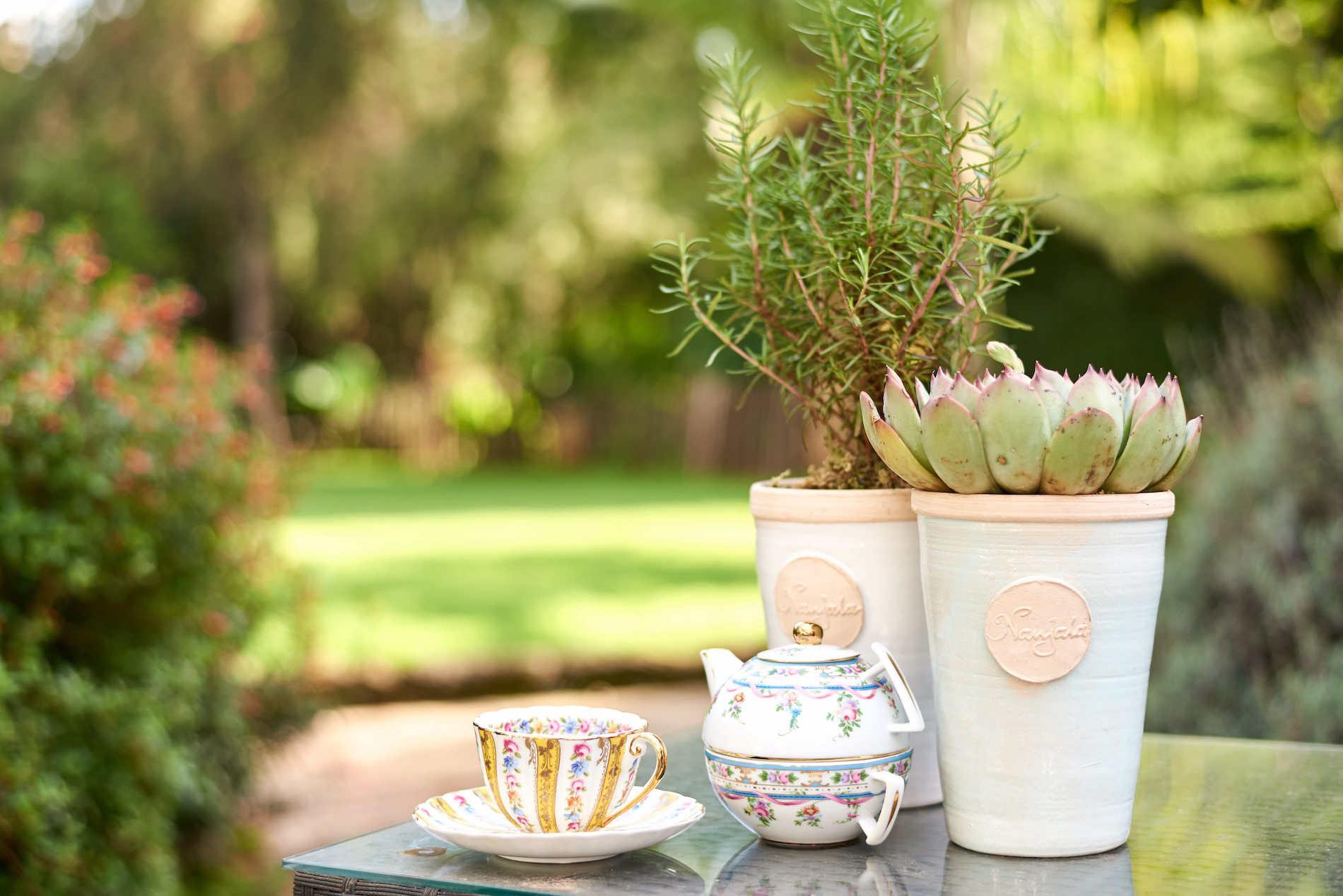 Branded Shop Nanjala plant pots