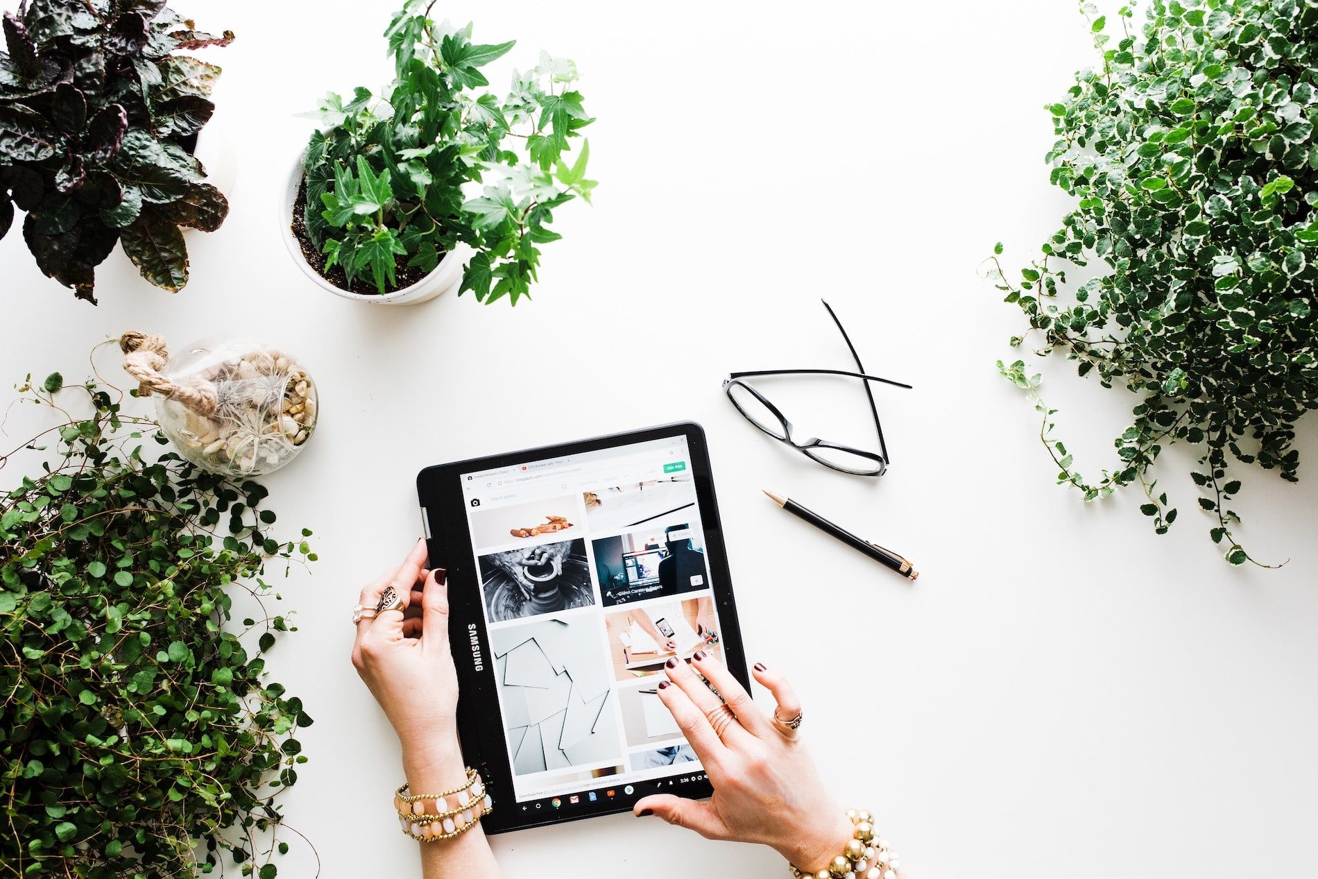 Person on ipad surrounded by plants