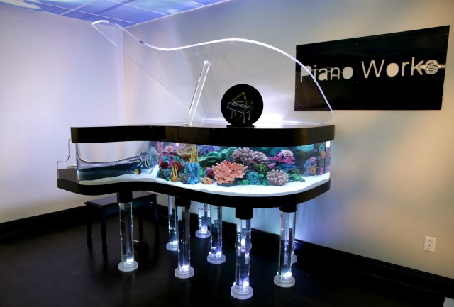 A Fish Tank In Your Piano