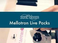 Free Mellotron Choir Kit For Ableton Live