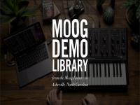 A Moog Modular For Your DAW