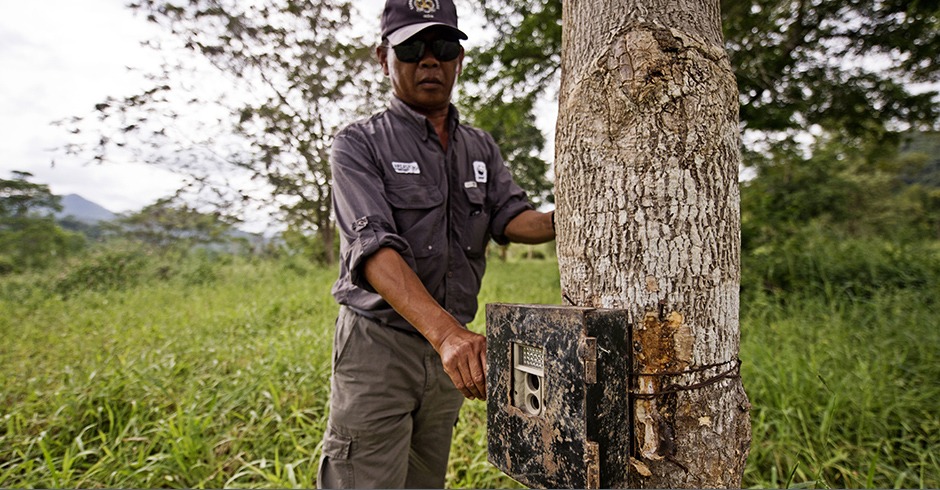 Camera traps are hidden in some of the world's most remote and inaccessible locations.