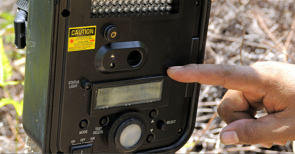 Camera traps are high-tech devices, some of which offer the ability to send live pictures through MMS or email.