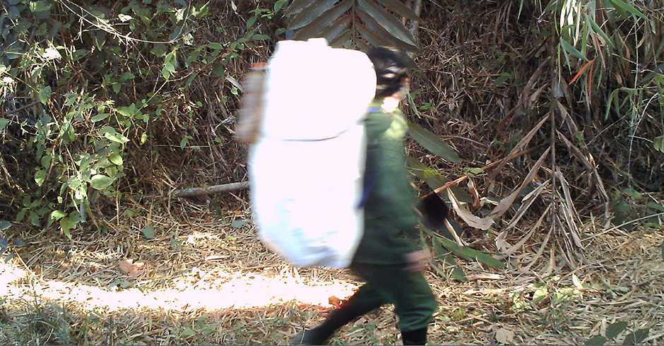 Camera traps also capture poachers walking through the jungle.