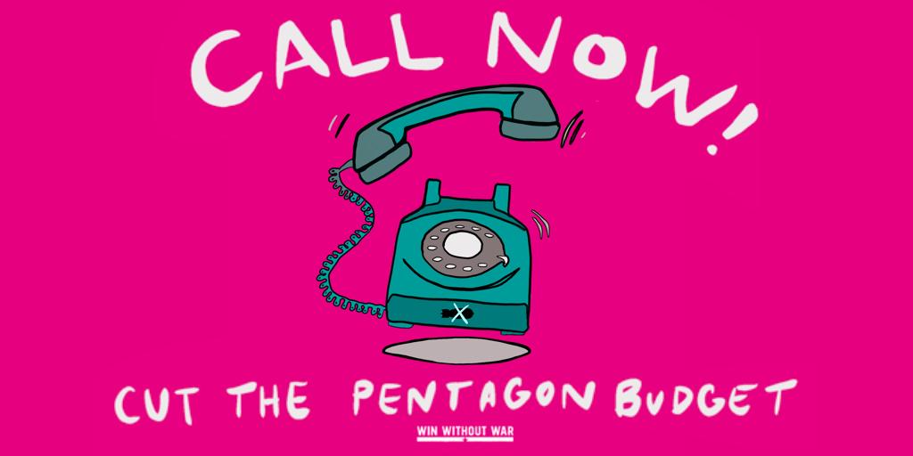 Call Your Senator: Cut the Pentagon budget now!