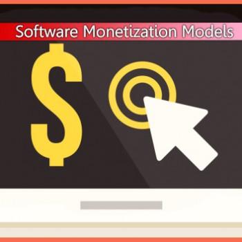Software-Monetization-Models