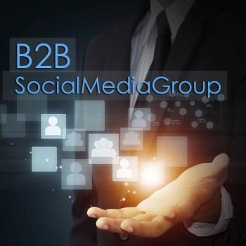 B2B-SocialMediaGroup
