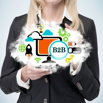 B2B-Ecommerce