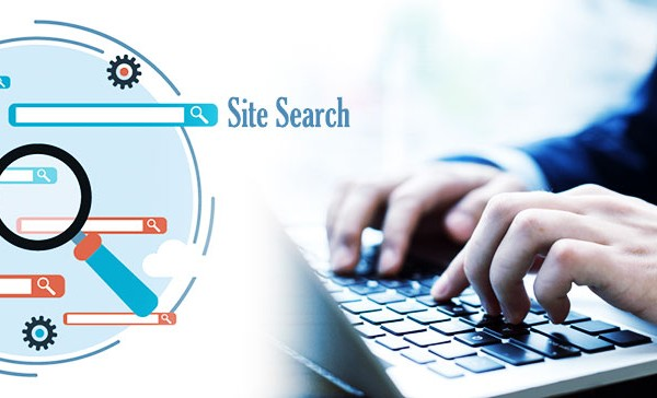 What-Is-Site-Search