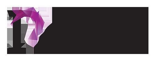 perion_media_logo_4