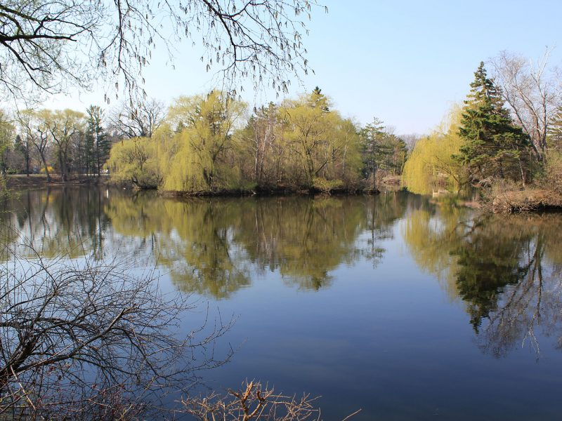 Pike River Watershed Plan