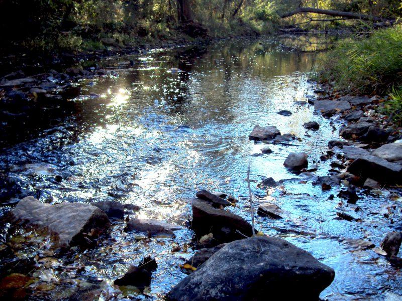Long Run Creek