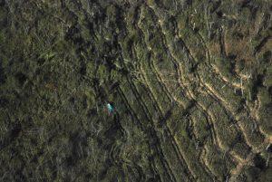 MarshMaster_Aerial