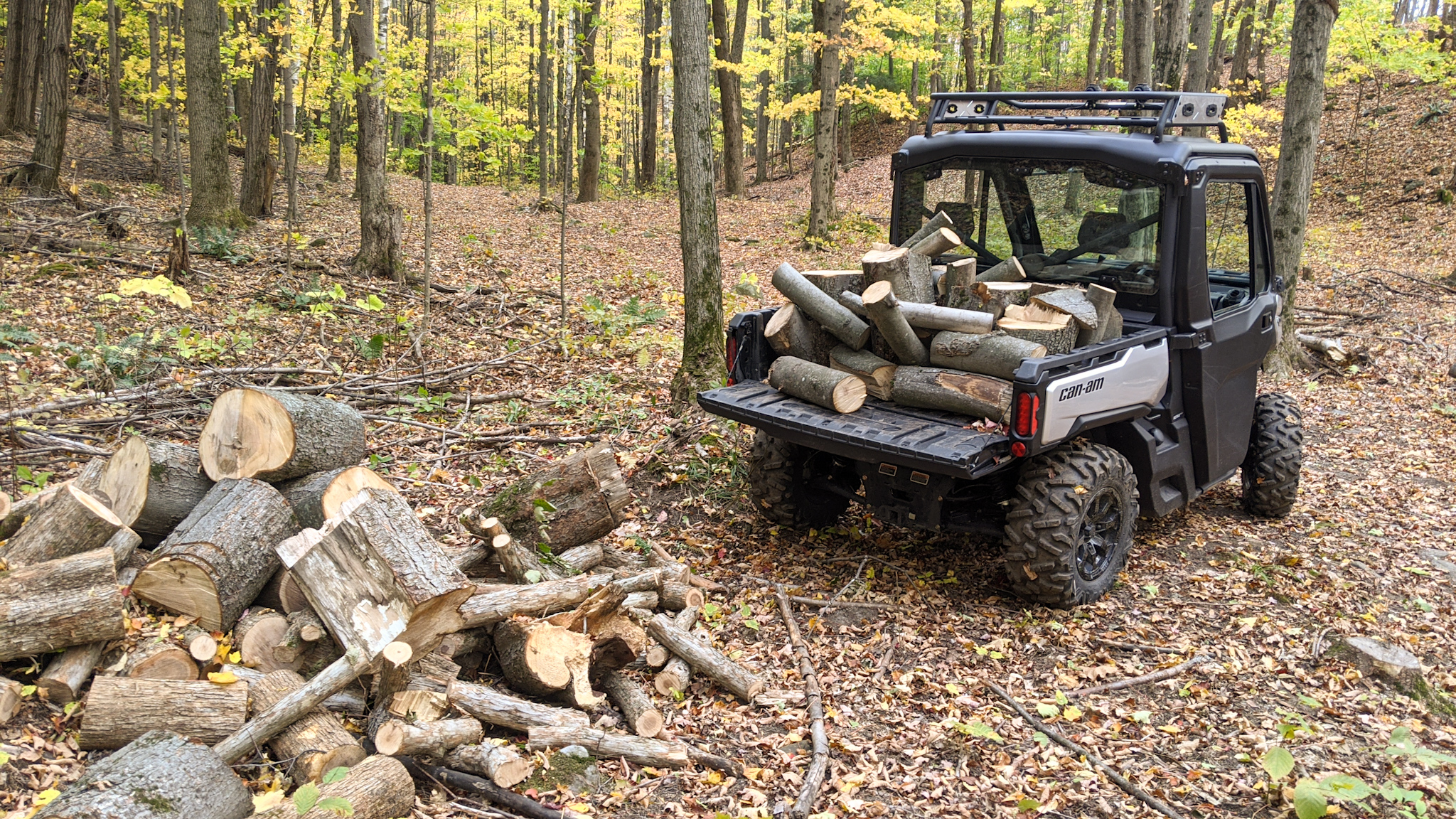 2021 Can-Am Defender hauling firewood