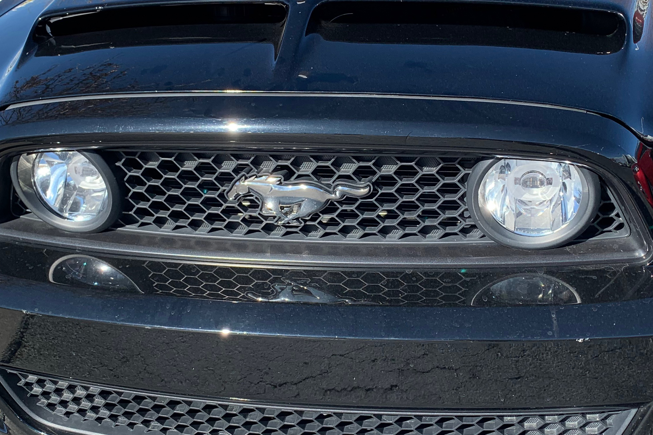 Ford Mustang GT Grill