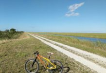 bikerumor pic of the day a carbondale mountain bike in the foreground on the grass beside a gravel road in the everglades of florida the land is flat and the sky is clear blue except for a whisp of a cloud in the top right