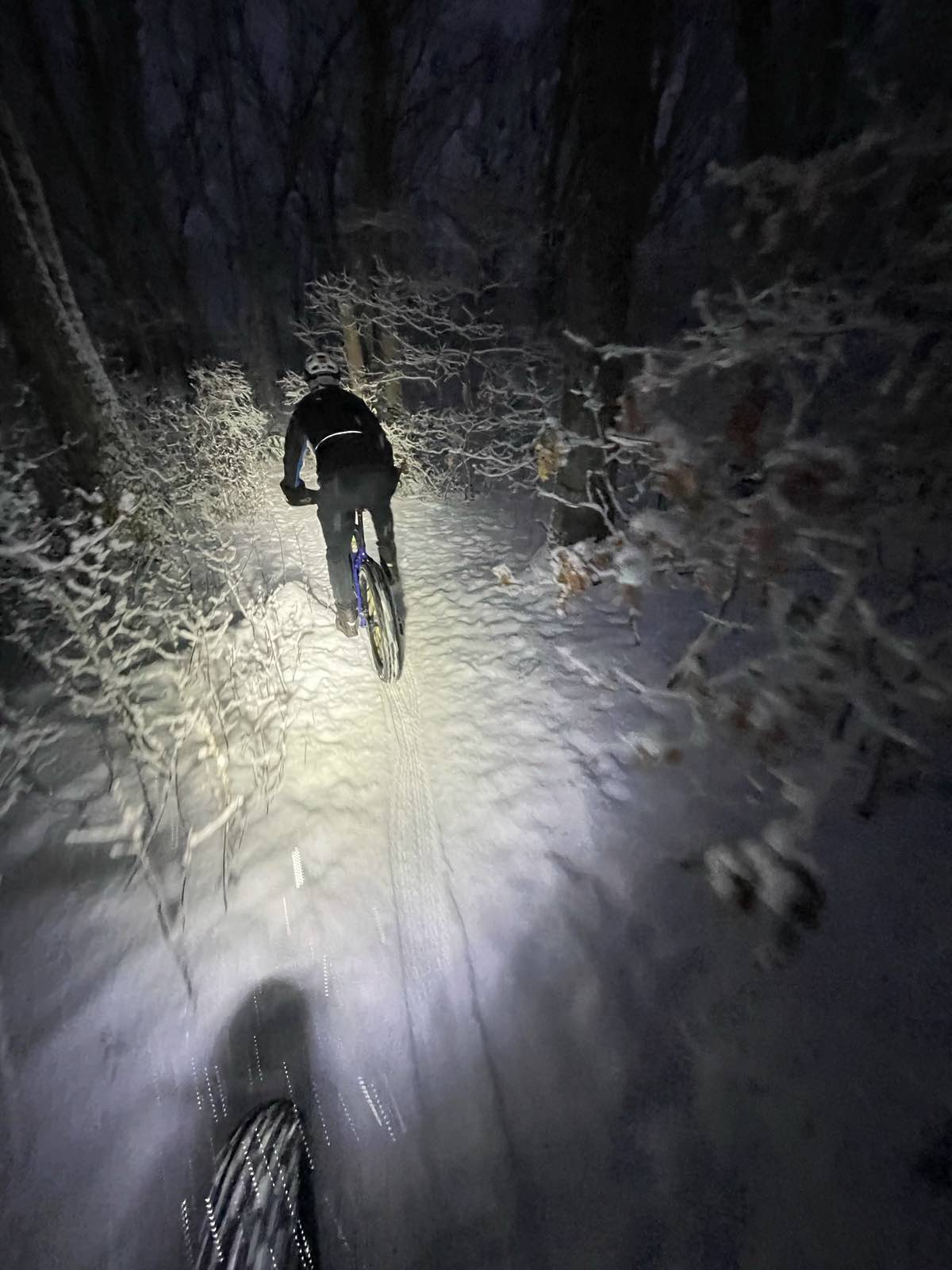 bikerumor pic of the day two bike riders at night in a snow storm outside boston. the headlamp of the first rider is lighting up the trail and the second rider.