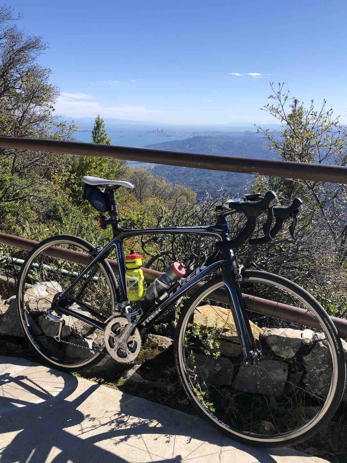 bikerumor pic of the day a trek road bike leans against a railing at the top of Mount Tamalpais in california. There are tall pine trees on the other side of the railing and views down the mountain towards the skyline of san francisco. it is a clear sunny day with few clouds in the sky.