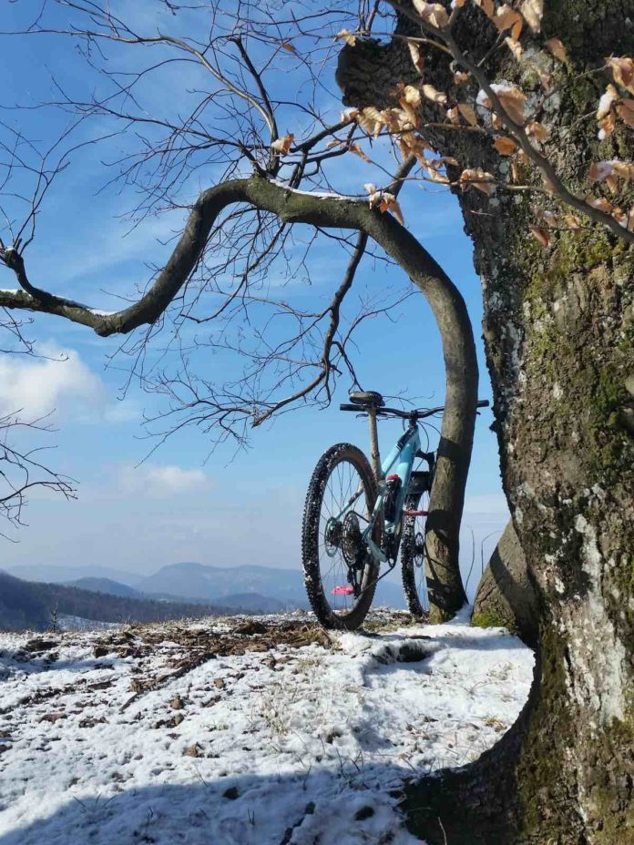 bikerumor pic of the day a mountain bike leans against a small crooked tree at the top of Rohata skala near the village of Mojtin in Slovakia