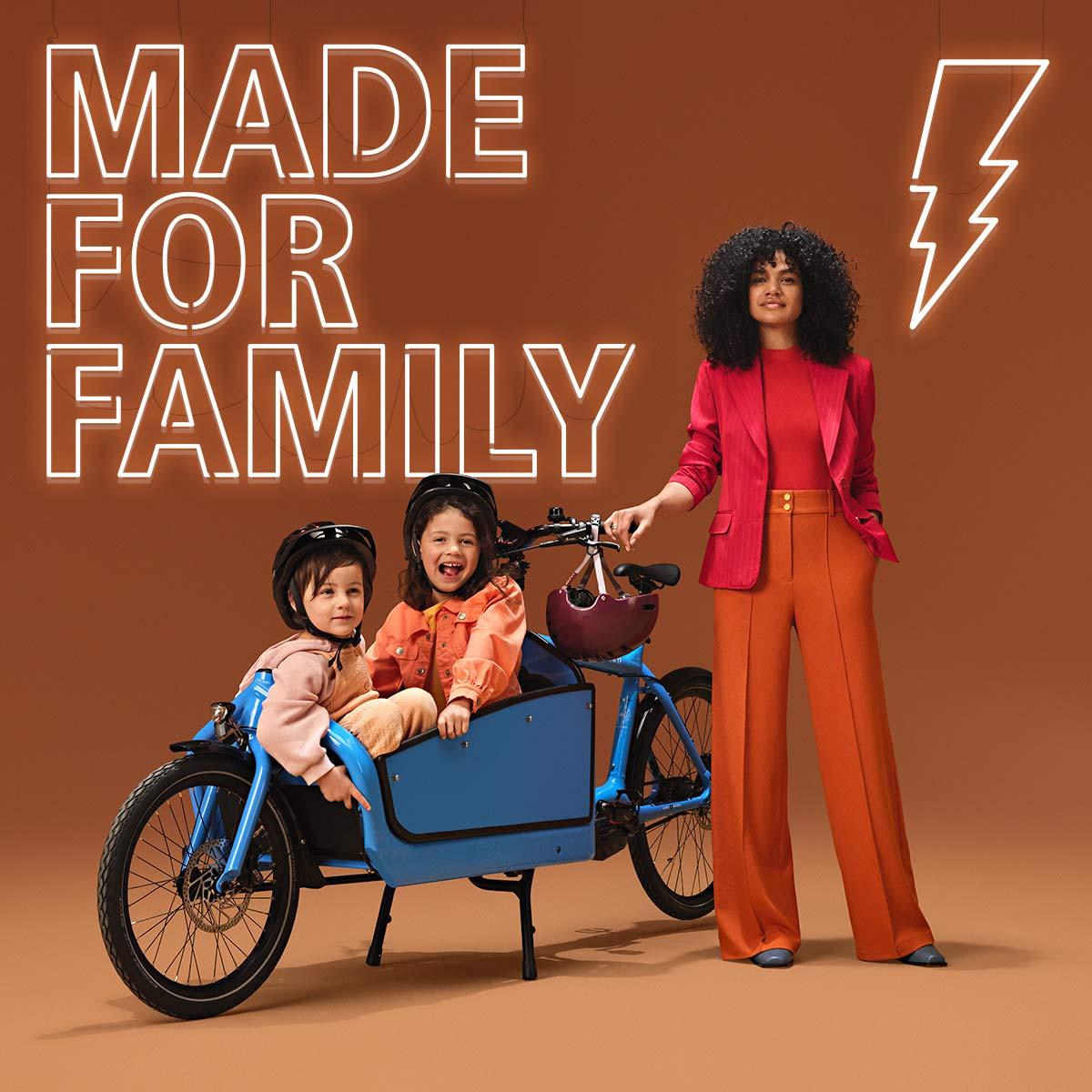 Shimano Cargo e-bikes, heavy-duty electric motor cargo-specific power tunes,made for family