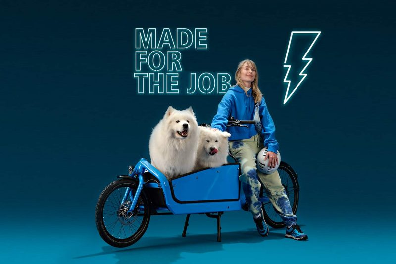 Shimano Cargo e-bikes, heavy-duty electric motor cargo-specific power tunes,made for the job