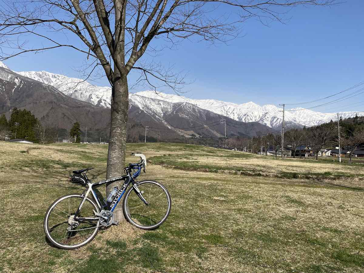 bikerumor pic of the day a stock bicycle leans against a bare tree in a grassy field below large mountains covered in snow. The sky is clear and blue.