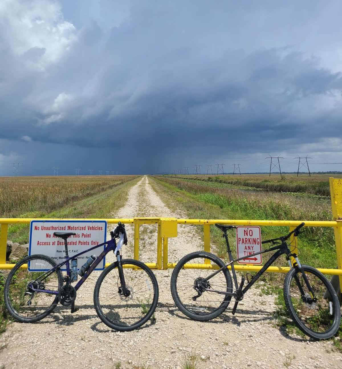 Bikerumor Pic Of The Day: Florida Everglades - Bikerumor