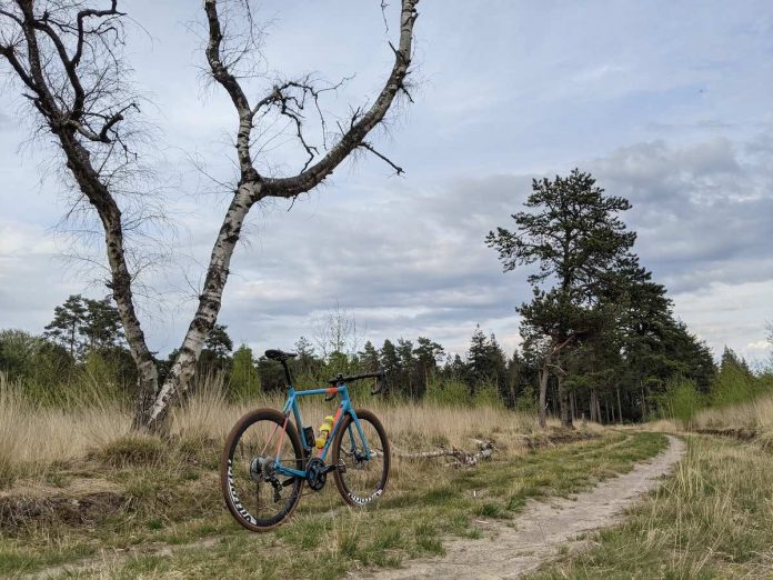 bikerumor pic of the day a bicycle is on a dirt path surrounded by grassy field, a bare tree nearby and pine trees in the distance, the sky is cloudy and grey.