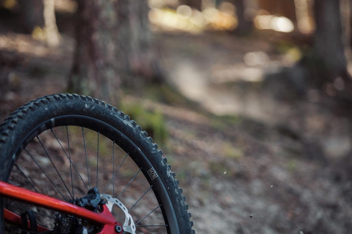 cushcore pro review nukeproof horizon v2 alloy wheels